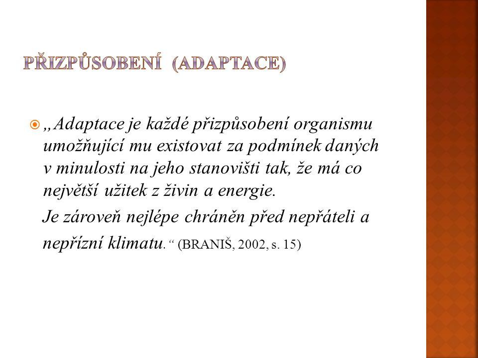 Přizpůsobení (adaptace)