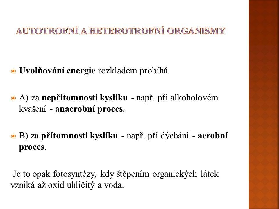 Autotrofní a heterotrofní organismy