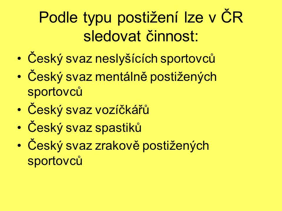 Podle typu postižení lze v ČR sledovat činnost:
