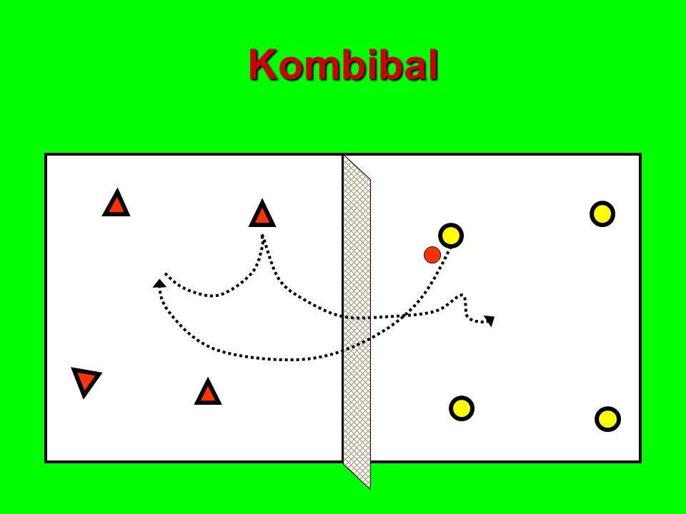 Kombibal