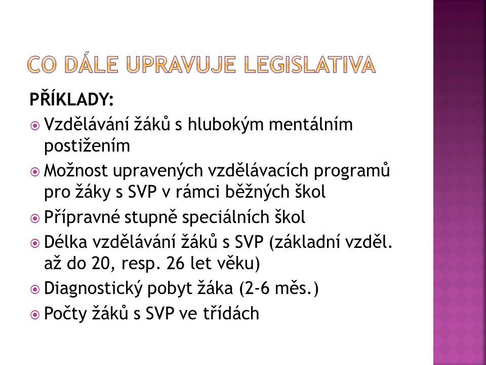 Co dále upravuje legislativa