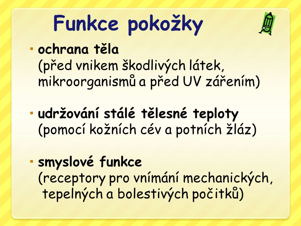 Funkce pokožky ochrana těla (před vnikem škodlivých látek, mikroorganismů a před UV zářením)
