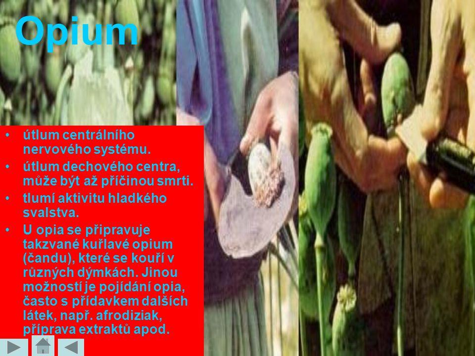 Opium útlum centrálního nervového systému.