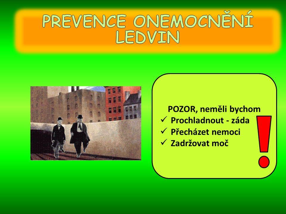 PREVENCE ONEMOCNĚNÍ LEDVIN