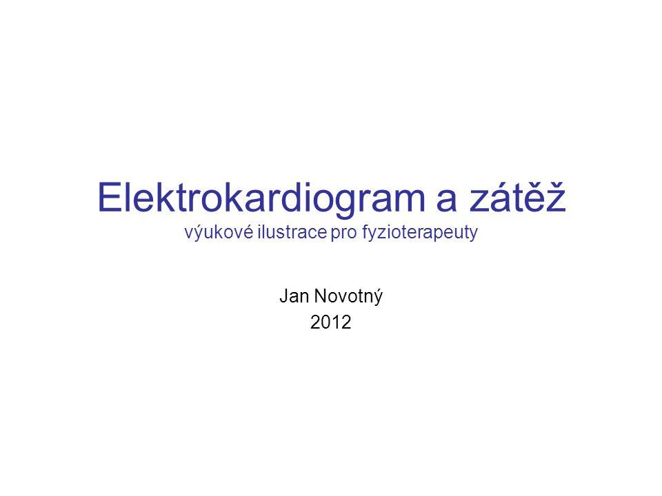 Elektrokardiogram a zátěž výukové ilustrace pro fyzioterapeuty