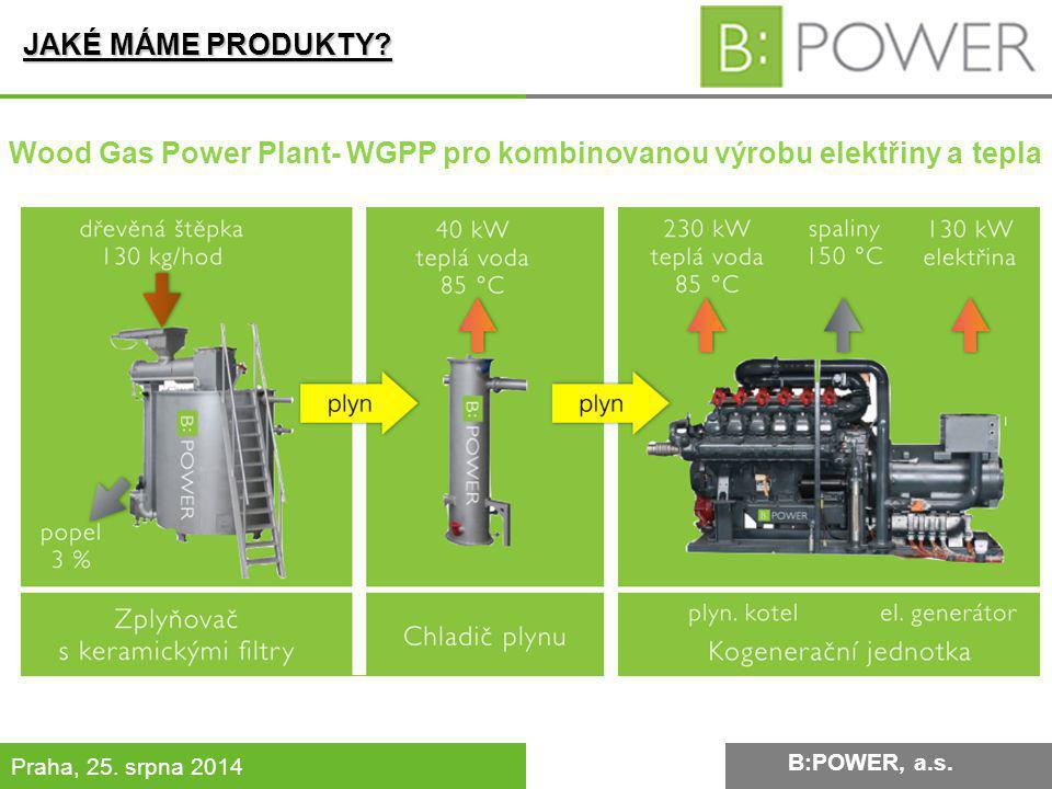 Wood Gas Power Plant- WGPP pro kombinovanou výrobu elektřiny a tepla