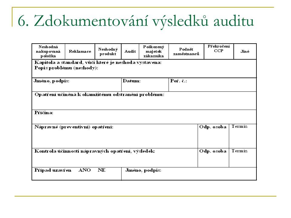 6. Zdokumentování výsledků auditu