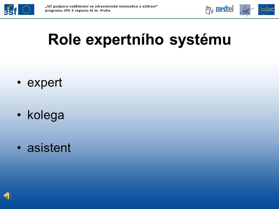 Role expertního systému