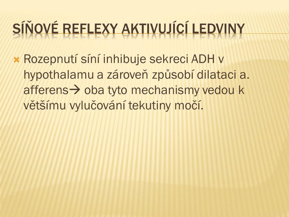 Síňové reflexy aktivující ledviny