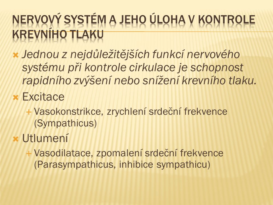 Nervový systém a jeho úloha v kontrole krevního tlaku