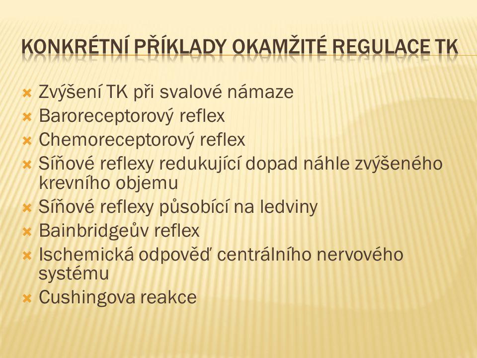 Konkrétní příklady okamžité regulace TK
