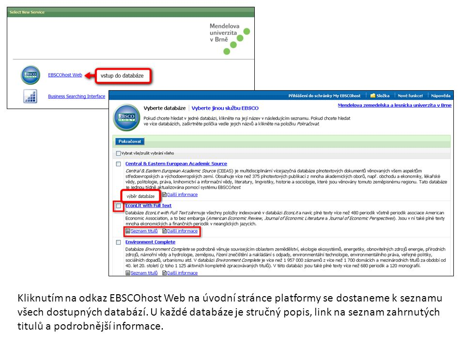Kliknutím na odkaz EBSCOhost Web na úvodní stránce platformy se dostaneme k seznamu všech dostupných databází.