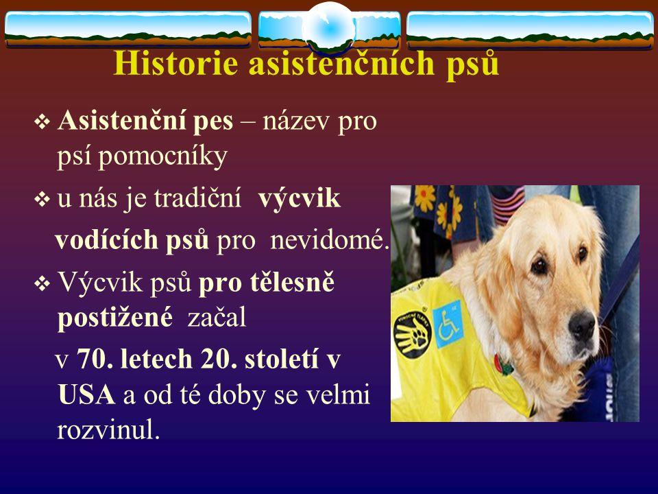 Historie asistenčních psů