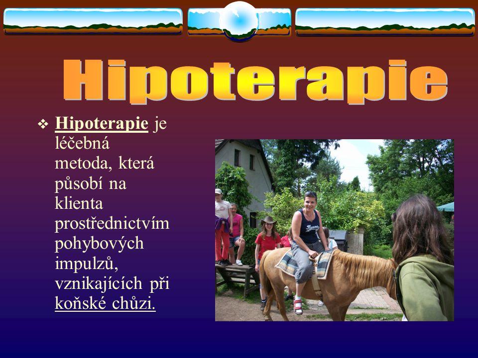 Hipoterapie Hipoterapie je léčebná metoda, která působí na klienta prostřednictvím pohybových impulzů, vznikajících při koňské chůzi.