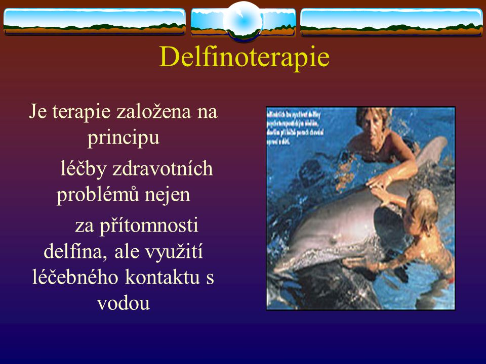 Delfinoterapie Je terapie založena na principu