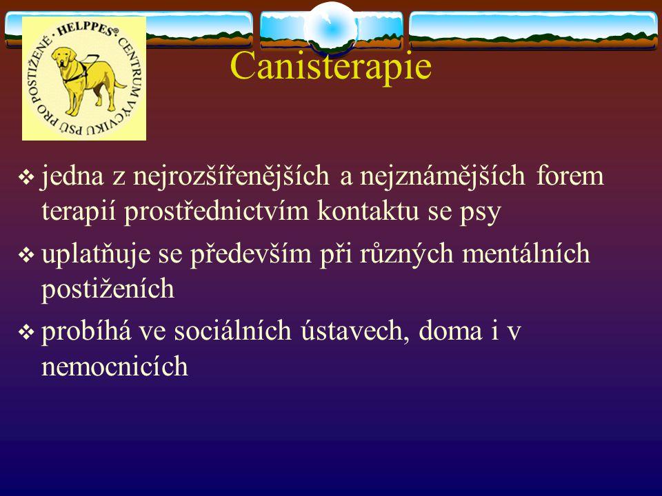 Canisterapie jedna z nejrozšířenějších a nejznámějších forem terapií prostřednictvím kontaktu se psy.