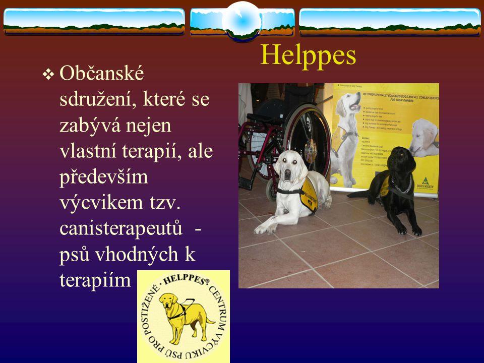 Helppes Občanské sdružení, které se zabývá nejen vlastní terapií, ale především výcvikem tzv.