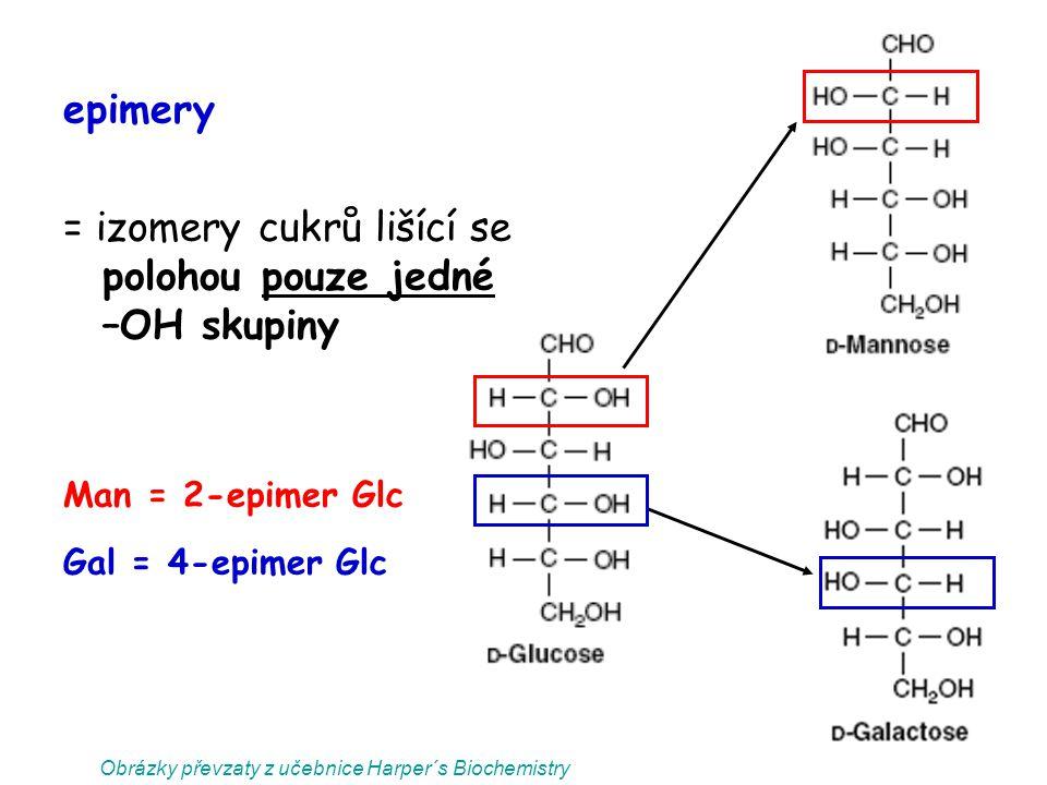 Obrázky převzaty z učebnice Harper´s Biochemistry