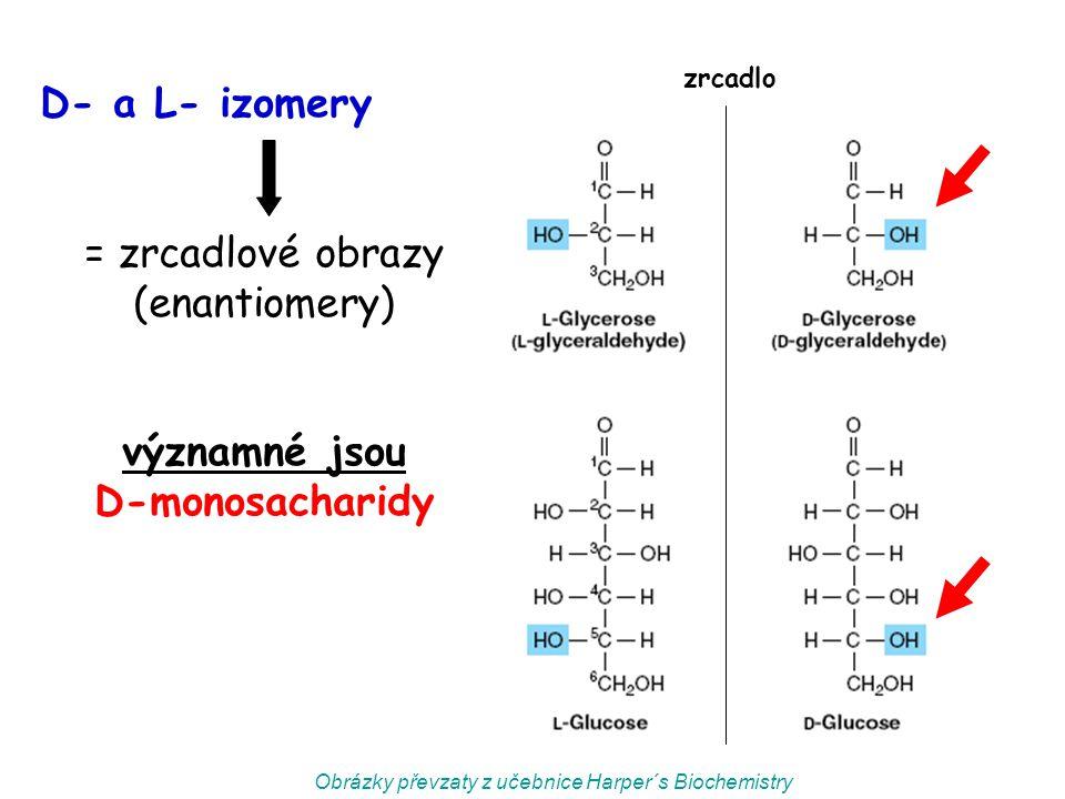 významné jsou D-monosacharidy