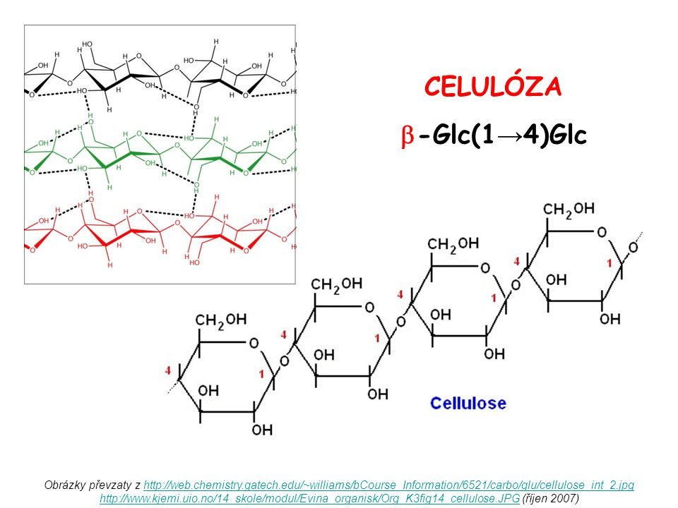 CELULÓZA -Glc(1→4)Glc.