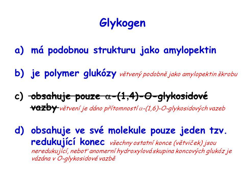Glykogen má podobnou strukturu jako amylopektin