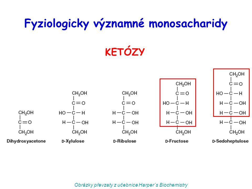 Fyziologicky významné monosacharidy