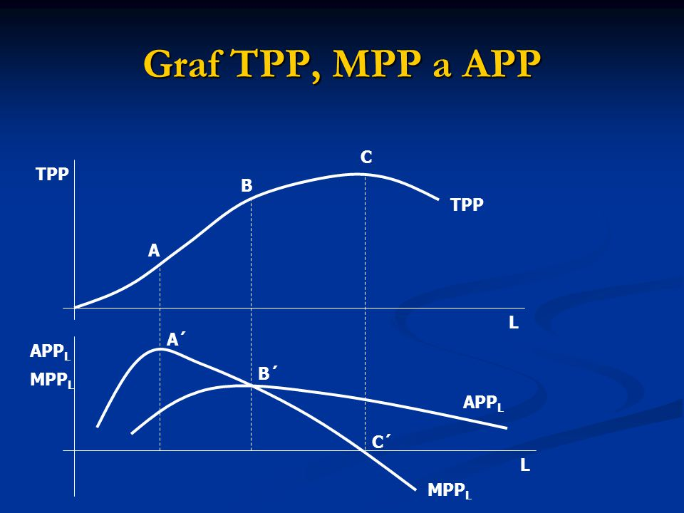 Graf TPP, MPP a APP C TPP B TPP A L A´ APPL B´ MPPL APPL C´ L MPPL
