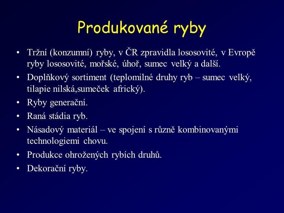 Produkované ryby Tržní (konzumní) ryby, v ČR zpravidla lososovité, v Evropě ryby lososovité, mořské, úhoř, sumec velký a další.