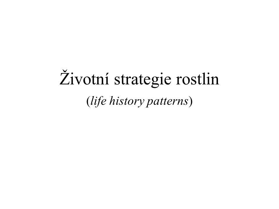 Životní strategie rostlin (life history patterns)