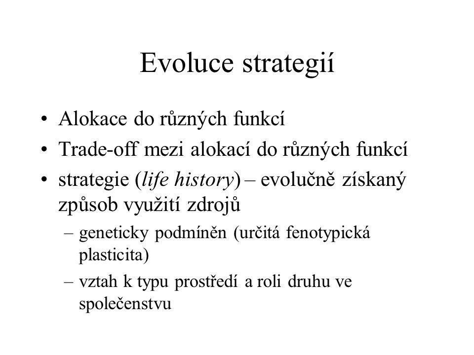 Evoluce strategií Alokace do různých funkcí