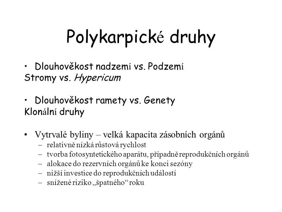Polykarpické druhy Dlouhověkost nadzemí vs. Podzemí