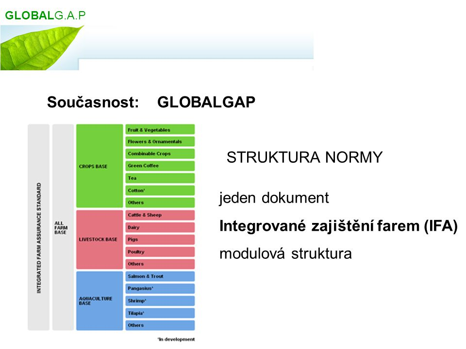 Současnost: GLOBALGAP