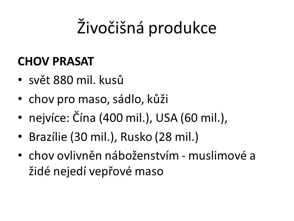 Živočišná produkce CHOV PRASAT svět 880 mil. kusů