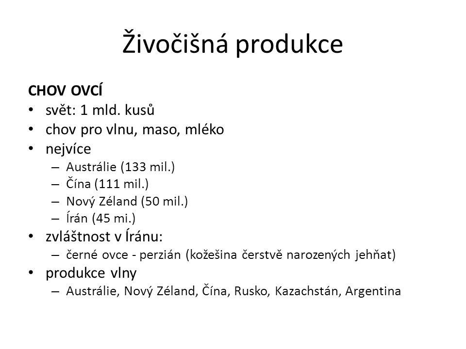 Živočišná produkce CHOV OVCÍ svět: 1 mld. kusů