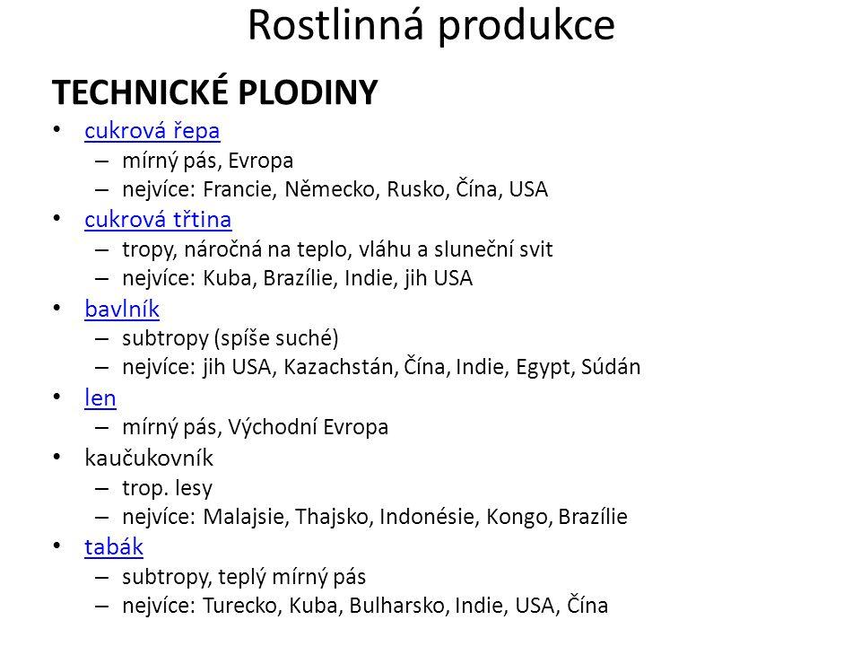 Rostlinná produkce TECHNICKÉ PLODINY cukrová řepa cukrová třtina