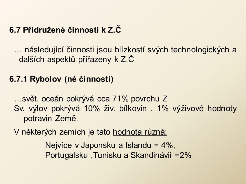 6.7 Přidružené činnosti k Z.Č