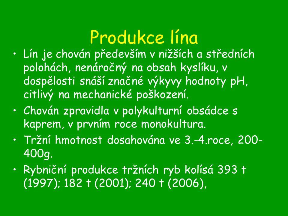Produkce lína