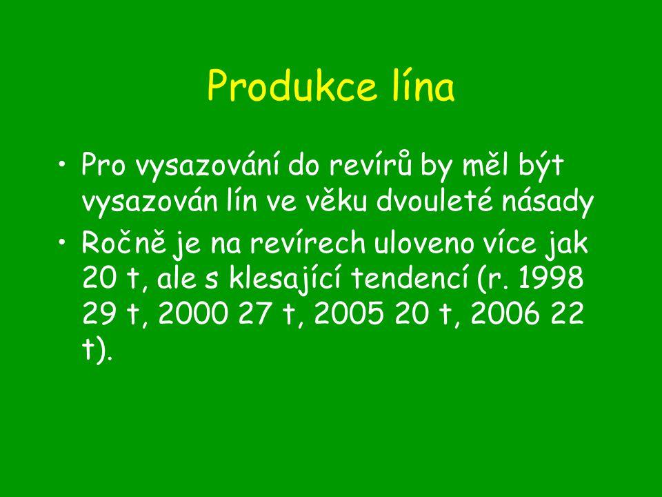 Produkce lína Pro vysazování do revírů by měl být vysazován lín ve věku dvouleté násady.