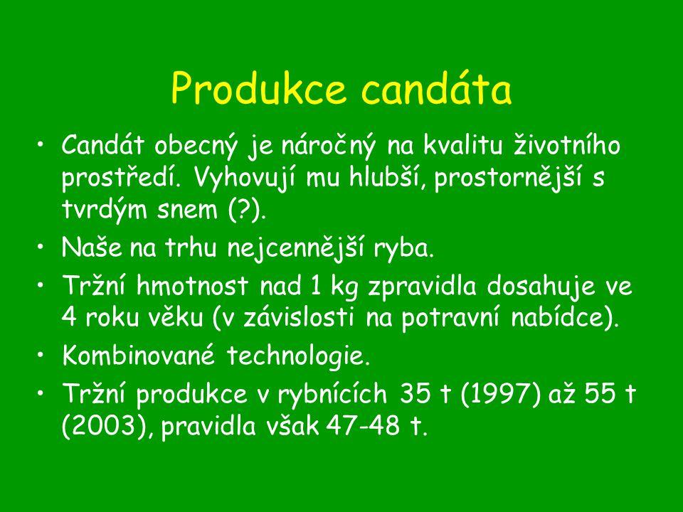 Produkce candáta Candát obecný je náročný na kvalitu životního prostředí. Vyhovují mu hlubší, prostornější s tvrdým snem ( ).