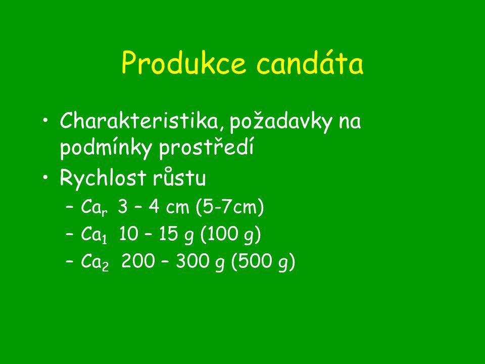 Produkce candáta Charakteristika, požadavky na podmínky prostředí