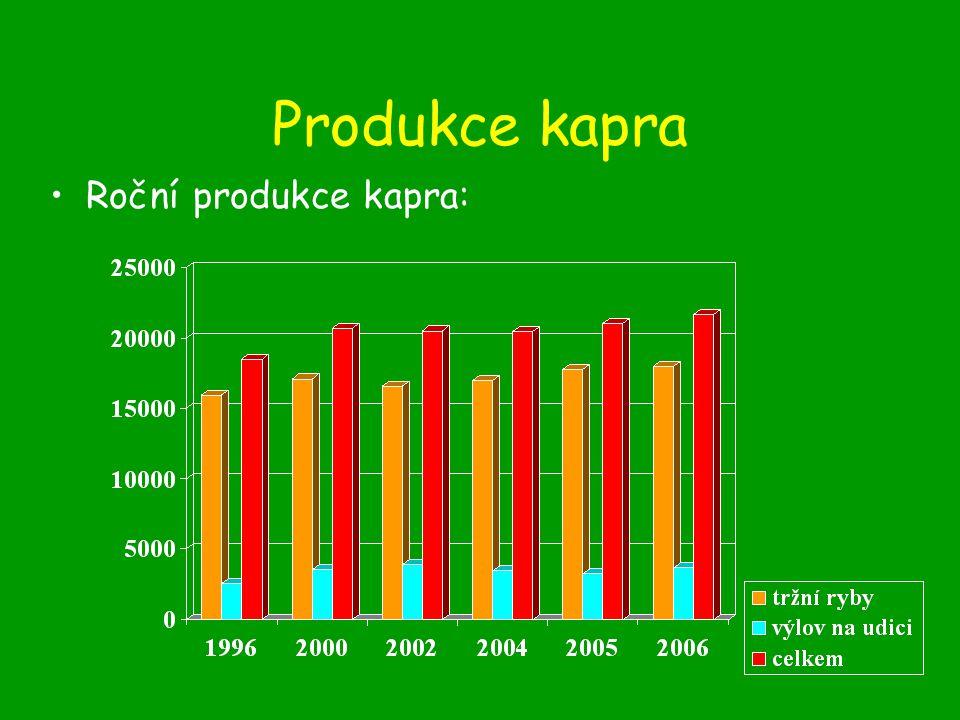 Produkce kapra Roční produkce kapra:
