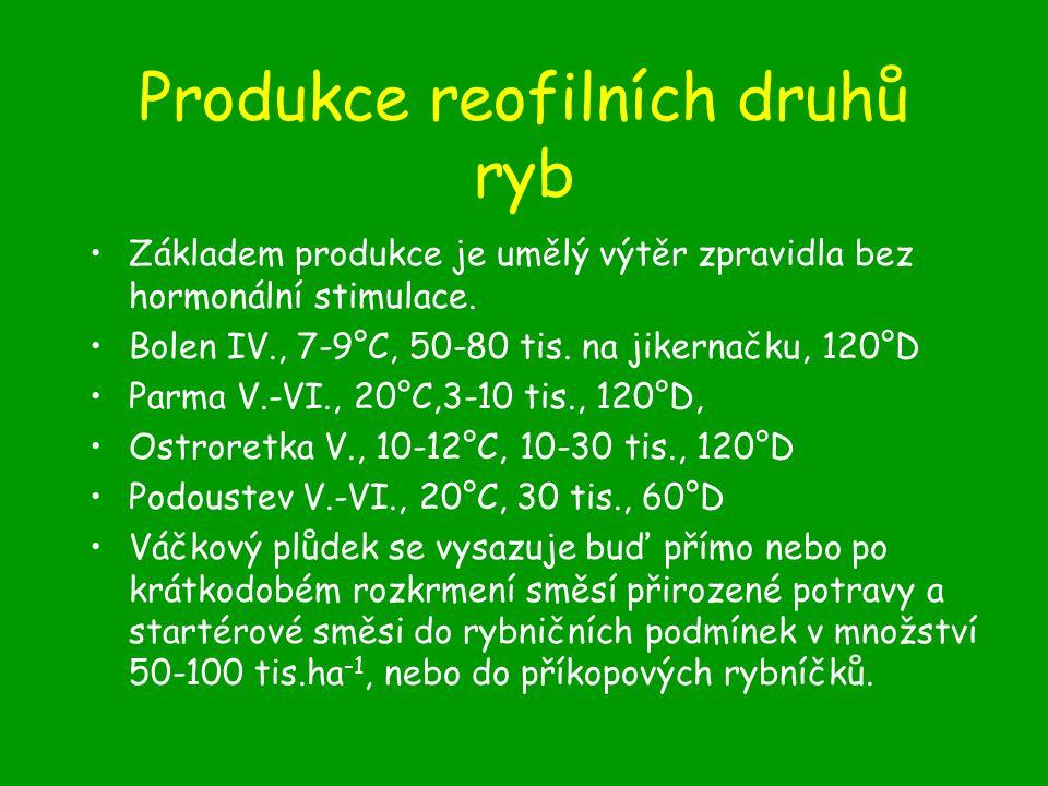 Produkce reofilních druhů ryb