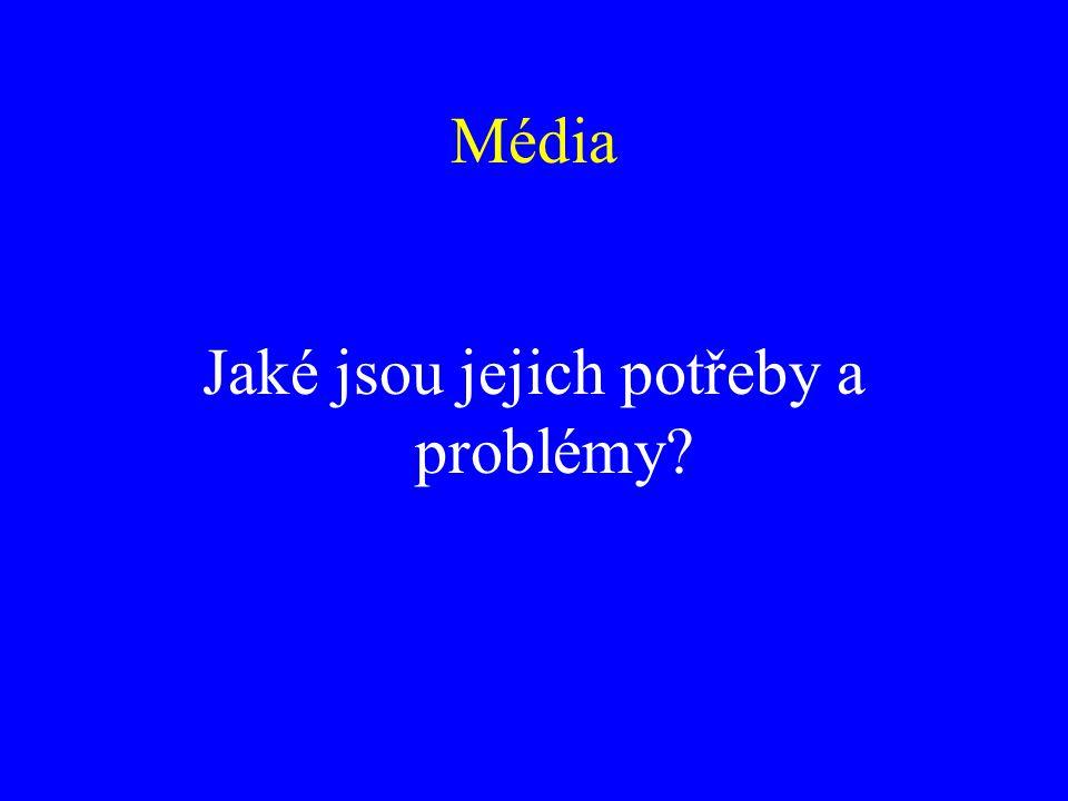 Jaké jsou jejich potřeby a problémy