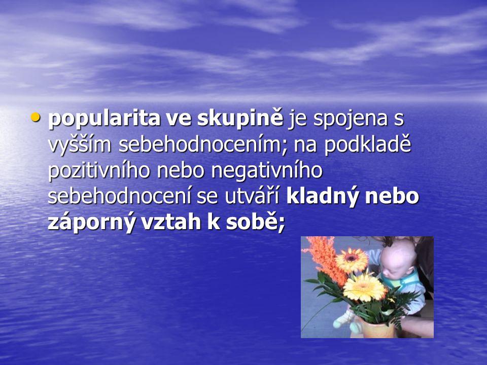 popularita ve skupině je spojena s vyšším sebehodnocením; na podkladě pozitivního nebo negativního sebehodnocení se utváří kladný nebo záporný vztah k sobě;