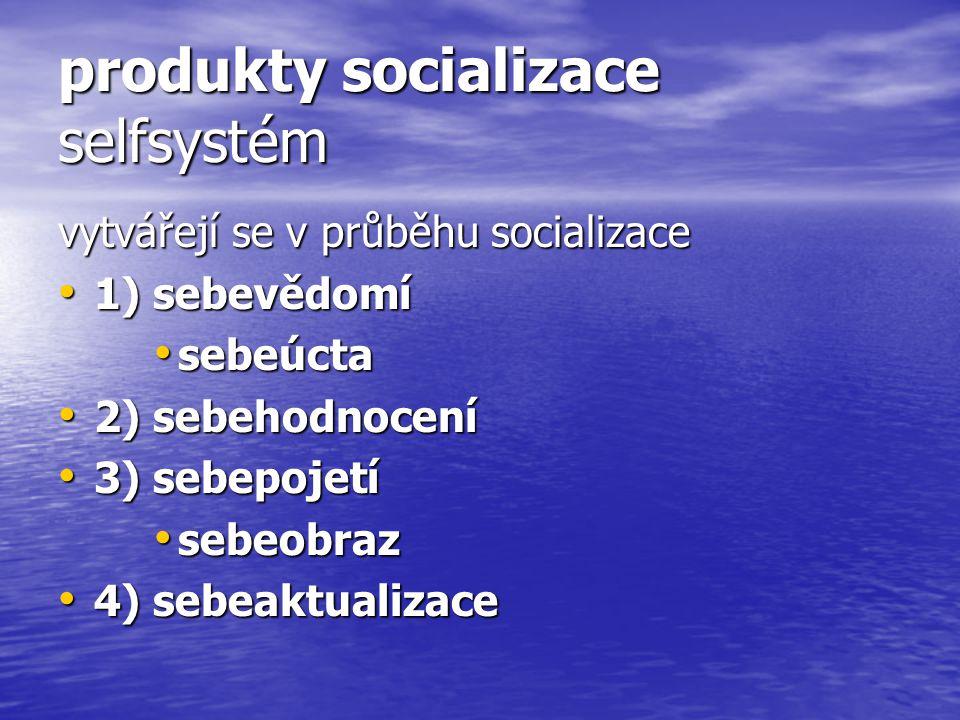 produkty socializace selfsystém