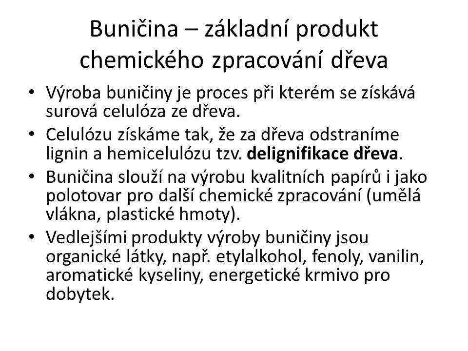 Buničina – základní produkt chemického zpracování dřeva