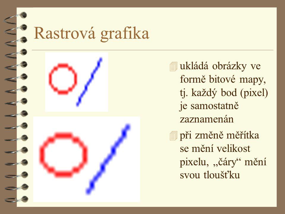 Rastrová grafika ukládá obrázky ve formě bitové mapy, tj. každý bod (pixel) je samostatně zaznamenán.
