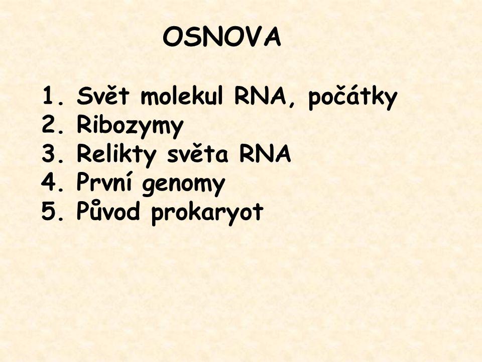 OSNOVA 1. Svět molekul RNA, počátky 2. Ribozymy 3. Relikty světa RNA