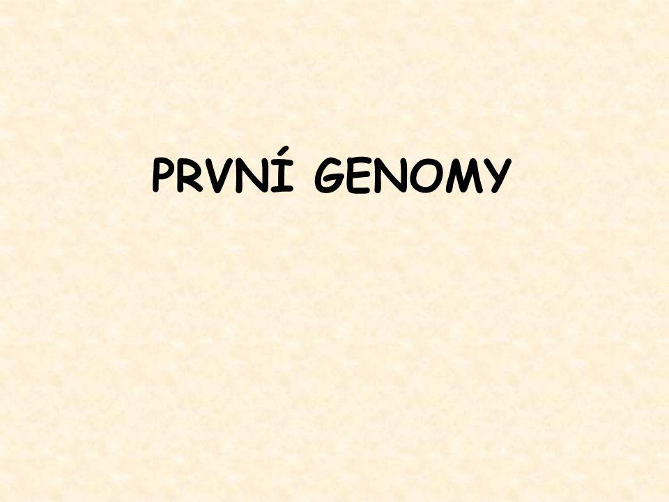 PRVNÍ GENOMY