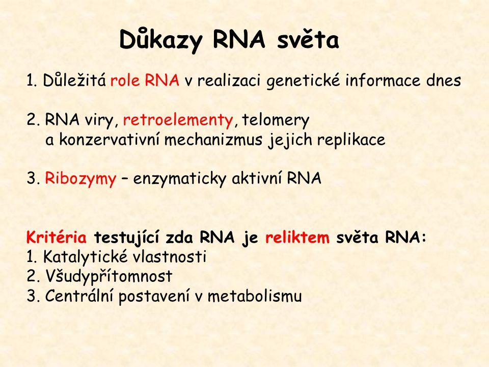 Důkazy RNA světa 1. Důležitá role RNA v realizaci genetické informace dnes. 2. RNA viry, retroelementy, telomery.